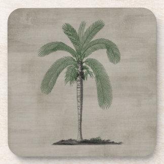 Vintage Palm Tree Coaster