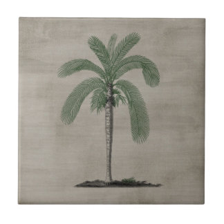 Vintage Palm Tree Tile