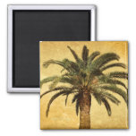 Vintage Palm Tree - Tropical Customised Template Square Magnet
