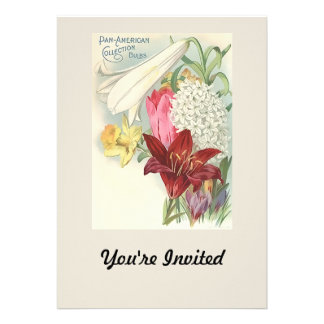 Vintage Pan American Bulbs Collection Personalized Announcements