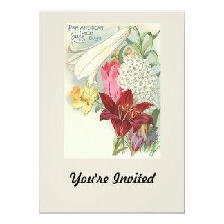 Vintage Pan American Bulbs Collection 13 Cm X 18 Cm Invitation Card