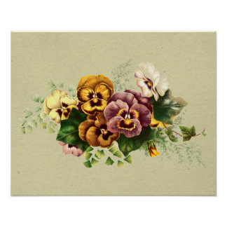 Vintage Pansies Bouquet Poster