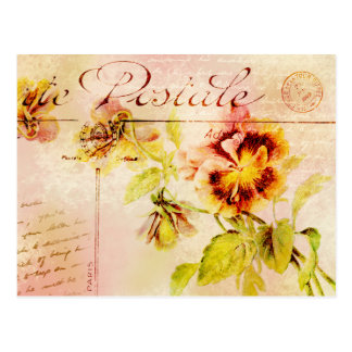 Vintage pansy flower cursive writing postcard