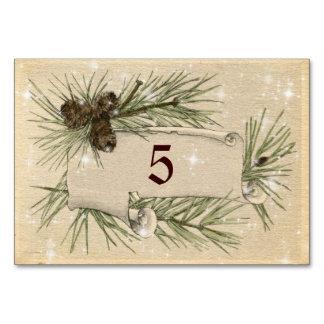 Vintage Paper, Pine cones, Christmas, Wedding. Card