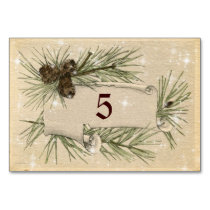 Vintage Paper, Pine cones, Christmas, Wedding. Table Cards