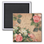 Vintage parchment and shabby chic Roses Square Magnet