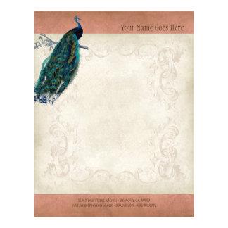 Vintage Parchment Peacock Letterhead Resume Paper 21.5 Cm X 28 Cm Flyer