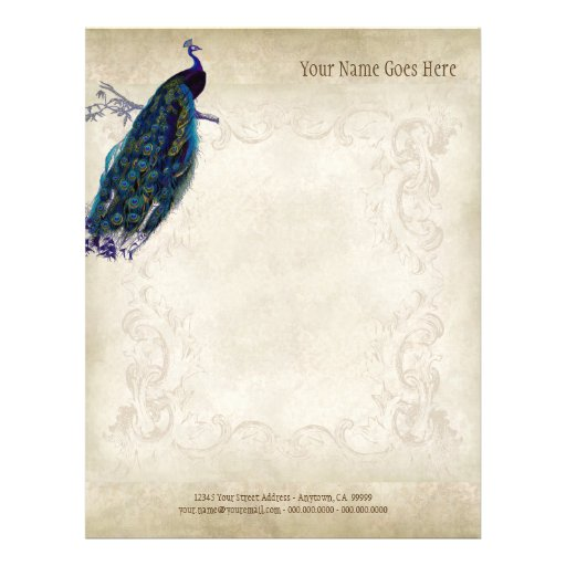 Vintage Parchment Peacock Letterhead Resume Paper Full Color Flyer