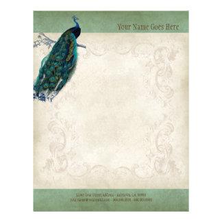 Vintage Parchment Peacock Letterhead Resume Paper Flyer