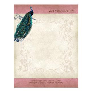 Vintage Parchment Peacock Letterhead Resume Paper Flyer Design