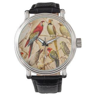 Vintage Parrot Cockatoo Conure Parakeet Cockatiel Watch
