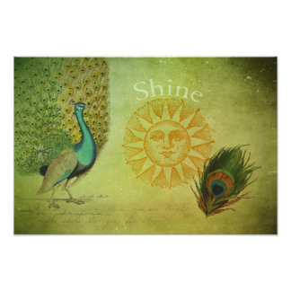 Vintage Peacock Art Collage Photo Print