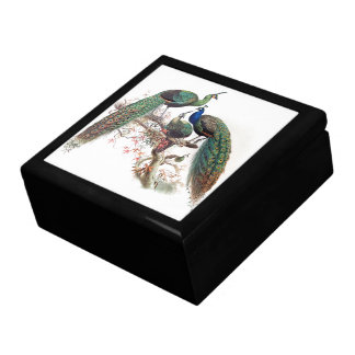Vintage Peacock Birds Animals Wildlife Gift Box