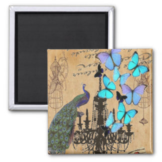 vintage peacock butterfly Paris fashion Square Magnet