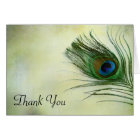 Vintage Peacock Feather Thank You Card