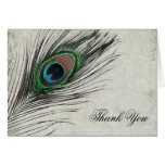 Vintage Peacock Feathers Thank You Note Card