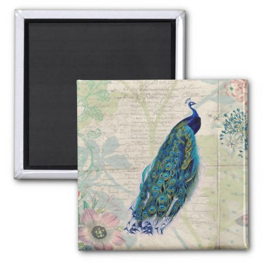 Vintage Peacock, Flowers and Butterfly Fridge Magnets
