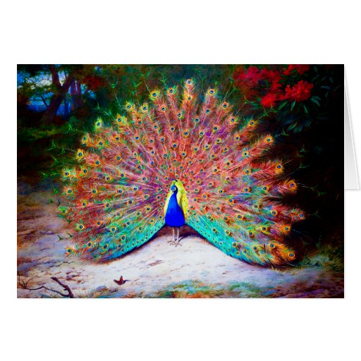 Vintage Peacock Painting Greeting Cards