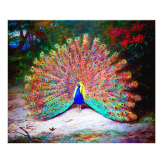 Vintage Peacock Painting Photo Print