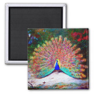 Vintage Peacock Painting Square Magnet