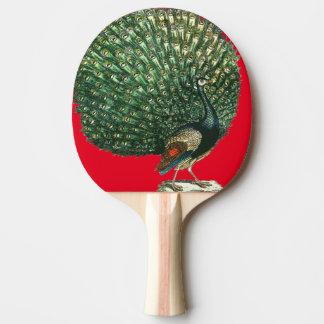 Vintage peacock ping pong ping pong paddle