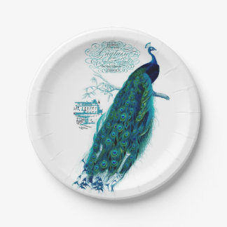 Vintage Peacock Plates 7 Inch Paper Plate