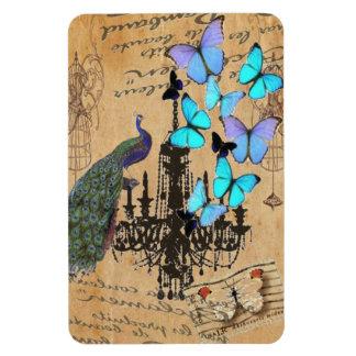 vintage peacock Teal butterfly Paris fashion Rectangular Photo Magnet