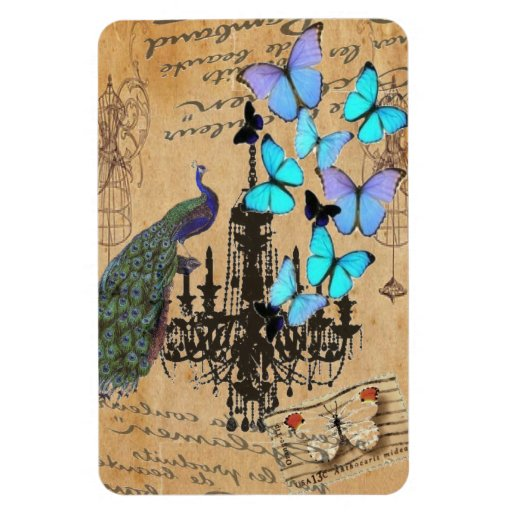 vintage peacock Teal butterfly Paris fashion Magnets