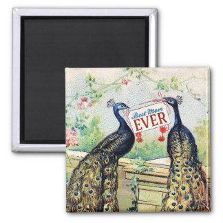 Vintage Peacocks - Best Mom Ever Square Magnet