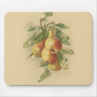 Vintage pears mousepads