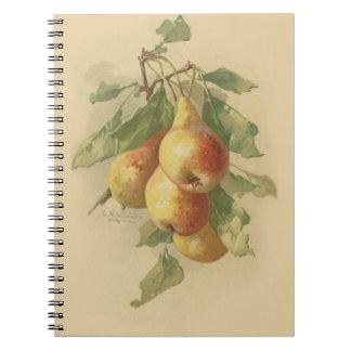 Vintage pears spiral notebook