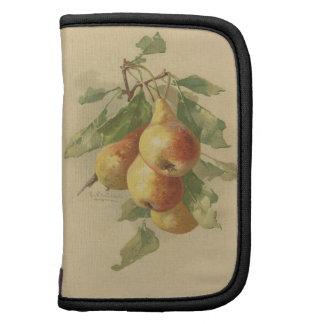 Vintage pears folio planner