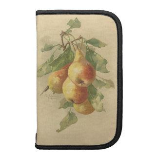 Vintage pears organizers