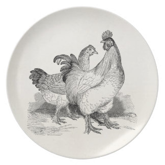 Vintage Personalized Chicken Rooster Cochin Birds Plate