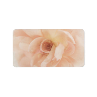 Vintage Personalized Peach Pink Garden Rose Flower Label