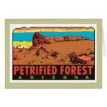 Vintage Petrified Forest Arizona AZ State Label