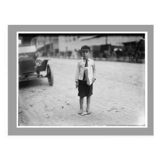 Vintage Photo of Newsboy Postcard