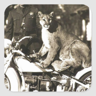 vintage photo of police officer on motorcycle puma square sticker