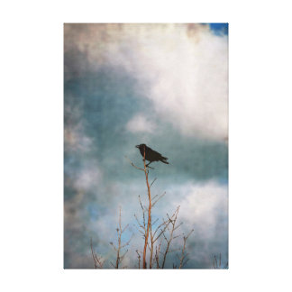 Vintage photograph of a crow on a tree canvas print