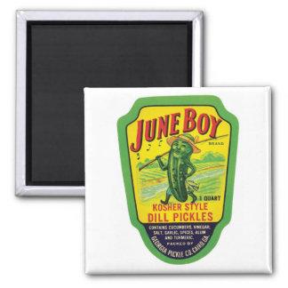 Vintage Pickles Food Product Label Magnet
