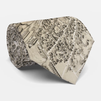 Vintage Pictorial Map of Nashua NH (1883) Tie