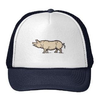 Vintage Pig Antique Piggy Illustration Cap