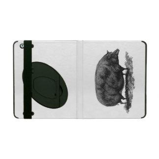 Vintage pig etching case