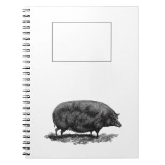 Vintage pig etching journal