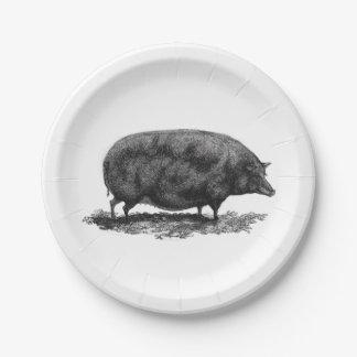 Vintage pig etching paper plate