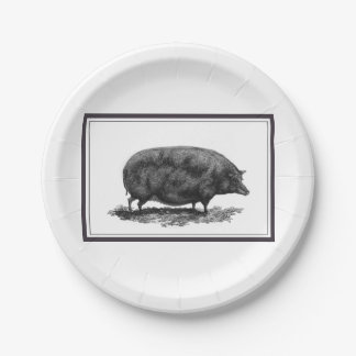 Vintage pig etching with borders paper plate 7 inch paper plate