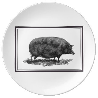 Vintage pig etching with borders plate porcelain plates