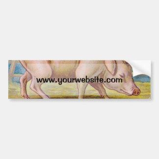 Vintage Pig Illustration Bumper Sticker