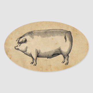 Vintage Pig Sticker