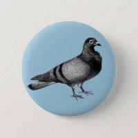Vintage Pigeon gifts